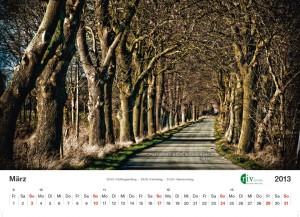 RIV-Kalender 2013 - März