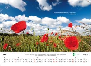 RIV-Kalender 2013 - Mai