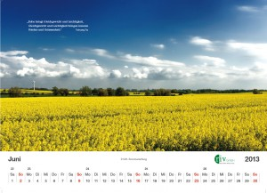 RIV-Kalender 2013 - Juni